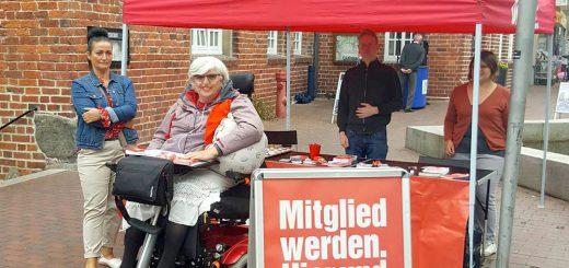 DIE LINKE Infostand Wildeshausen Juni 2018